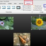 Align and Distribute Pictures in PowerPoint