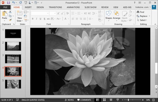 Black and White Options for Photo Album Presentations in PowerPoint