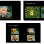 Photo Album Picture Layouts in PowerPoint