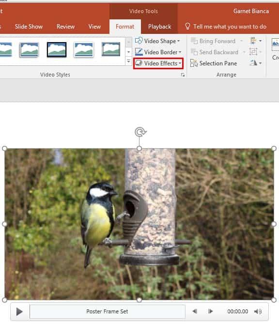 Video Effects in PowerPoint