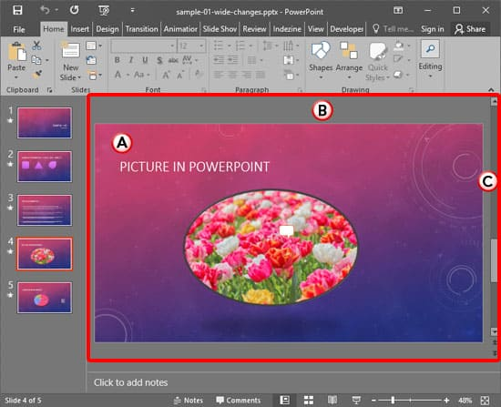 Slide Area in PowerPoint