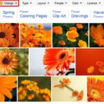 Bing Images Search by Color